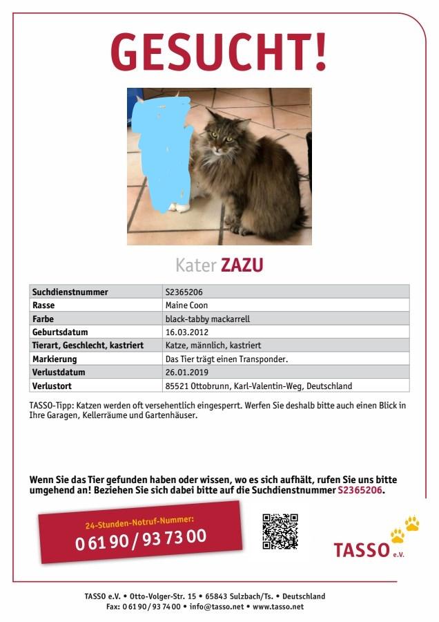 Online-Katzen-Dating-Seite
