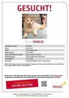 Tasso-Charlie