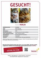 merlin54568